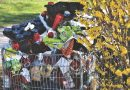 Planète : Comment réduire nos déchets plastiques ?
